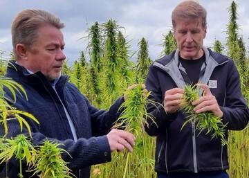 Idätettyjen superfood-kasvituotteiden valmistus käynnistyy - Trans Farm ja Golden Malt perustavat yhteisyrityksen