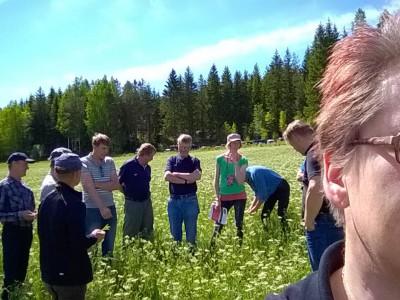 Kuminaväkeä pellonpientareella